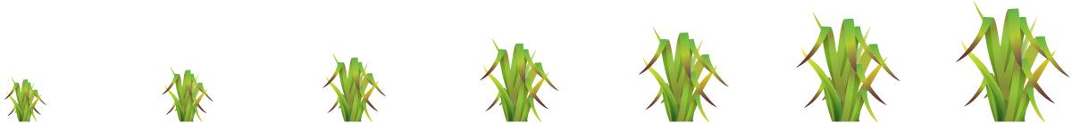 GRASS_SIZES